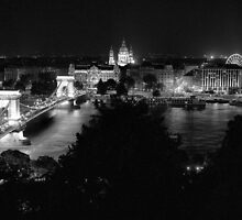 The View from Buda Castle by Rodney Johnson