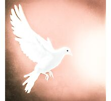 Dove in Flight Red Photographic Print