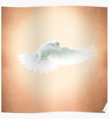 Dove in Flight Yellow Poster