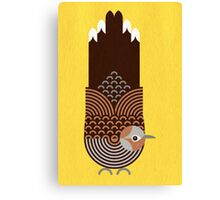 Zebra Dove Canvas Print