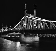 Liberty Bridge, Budapest by Rodney Johnson