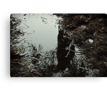 Surreal swamp Canvas Print