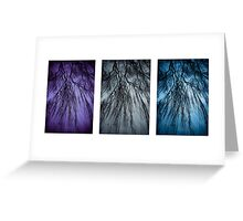 Willow Tri Panel Greeting Card