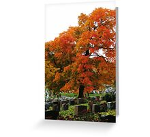 Autumn, Mount Royal, Montreal Greeting Card