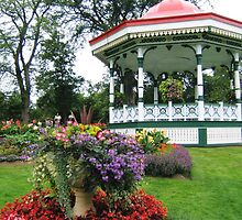 Summer Flowers, Halifax Public Gardens by Naomi Slater