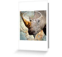 the balls of the Rhino poachers Greeting Card