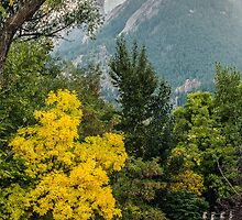 Fall For The Flatirons by Greg Summers