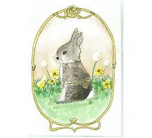 Clockwork Bunny Photographic Print