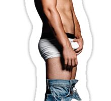 Nick Jonas & The Funky Bunch Sticker