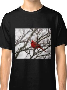 Winter Cardinal - Icy Tree Classic T-Shirt