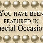 Special Occasion Banner by Moonlake