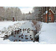 Winter in Geldrop - Nederland Photographic Print