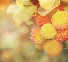 Irish Strawberries by Linda Lees