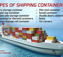 A quotographic on Shipping Container by Infographics