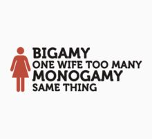 Bigamy: One Wife Too Many by artpolitic