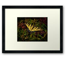 Power of the Butterfly Framed Print