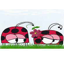 Ladybug Wooing His New Love Photographic Print