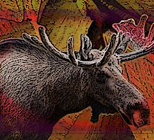 Liquid Color Bull Moose by Debra McDonough