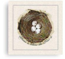 Wildcraft Nest Canvas Print