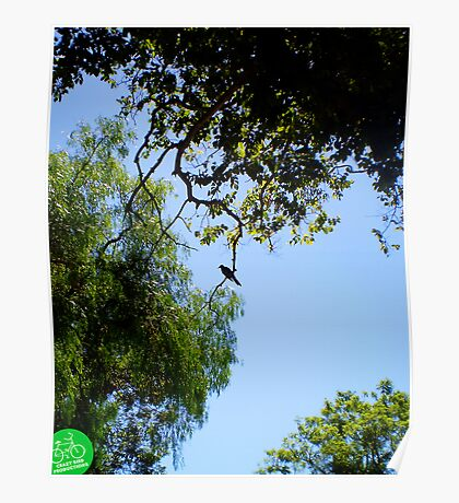 Lone Bird On A Limb Is Not God In A Photograph?  Poster