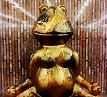 Seated Meditation of a Very Wise Frog by Scott Mitchell