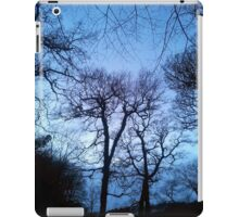 Llansteffan wood iPad Case/Skin
