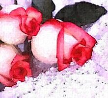 Roses in the snow water colour painting by DrWhoJohnSmith