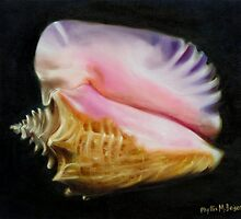 Pink Queen Seashell by Phyllis Beiser