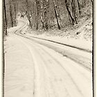 Winter Road by KellyHeaton