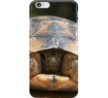 Young Spur Thighed Tortoise Looking Out of Its Shell iPhone Case/Skin