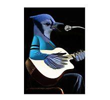 BLUE JAY PLAYING GUITAR TEE SHIRT & VARIOUS APPAREL.. Photographic Print