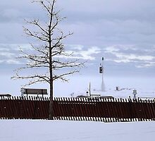 Maritime Marker with Trees by Timothy  Ruf