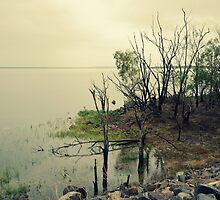 Lakeside Darwin River Dam by Victoria  Eastwood