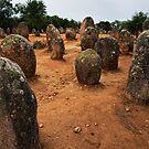 Cromeleque dos Almendres, Evora, Alto Alentejo, Portugal by Andrew Jones