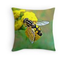 Insect of the family Syrphidae, Throw Pillow