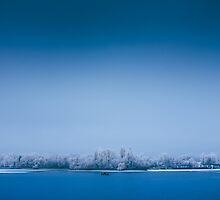 Frozen by Mihai Ilie