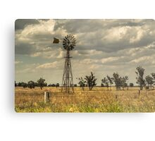 Country NSW Metal Print