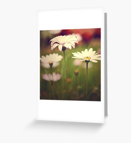 Field of Paper Flowers Greeting Card