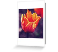 Fire Flower Greeting Card