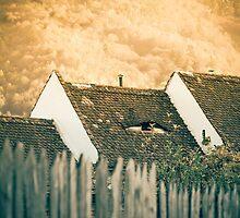 Sleepless Cyclop by Mihai Ilie