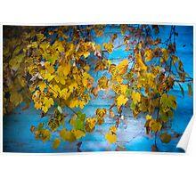 Autumn Tango Poster