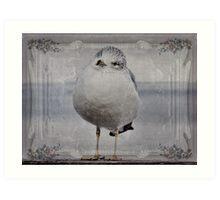 Seagull Affirmations Art Print