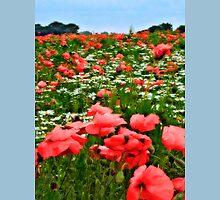 Poppyland, Colby, Norfolk Unisex T-Shirt
