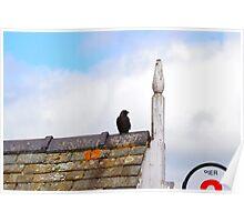 Bird on Windermere Pier (Colour) Poster
