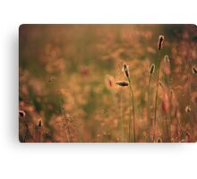 Spring Rush Canvas Print