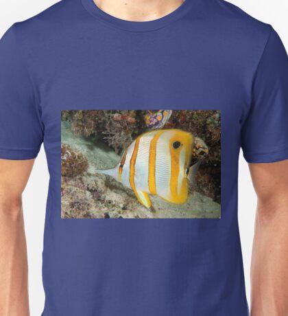 Beaked Coralfish, Kapalai, Sabah, Malaysia Unisex T-Shirt