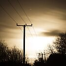 Power Masts in Moon Light by Aaron  Fleming