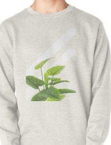 Botanical Art #redbubble #decor #style #tech T-Shirt