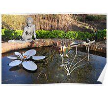 Pond still life Poster