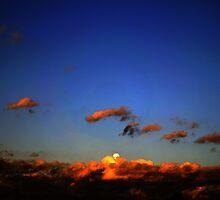 Sonoran Desert Dawn by ptosis